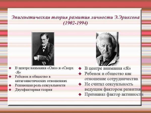 фото различия между теориями Фрейда и Эриксона