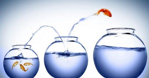 Преимущества и недостатки амбициозности