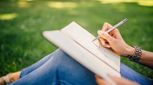 начать вести дневник успеха
