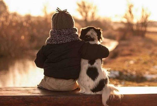 забота о животных
