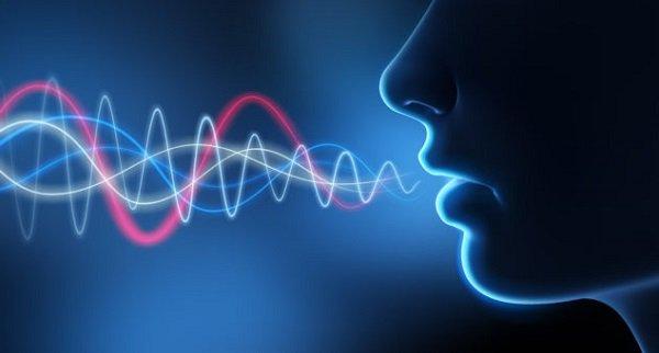 Как словесные вредители характеризуют оратора