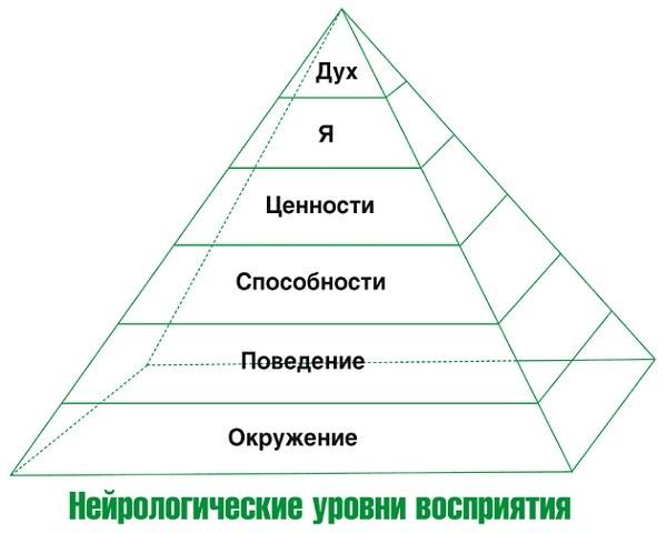 Уровни пирамиды Дилтса