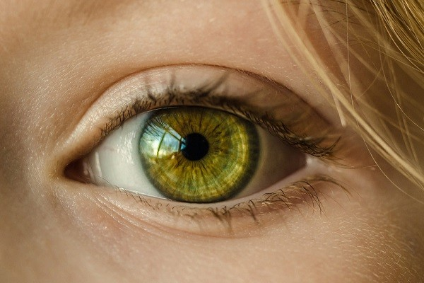 движение глаз