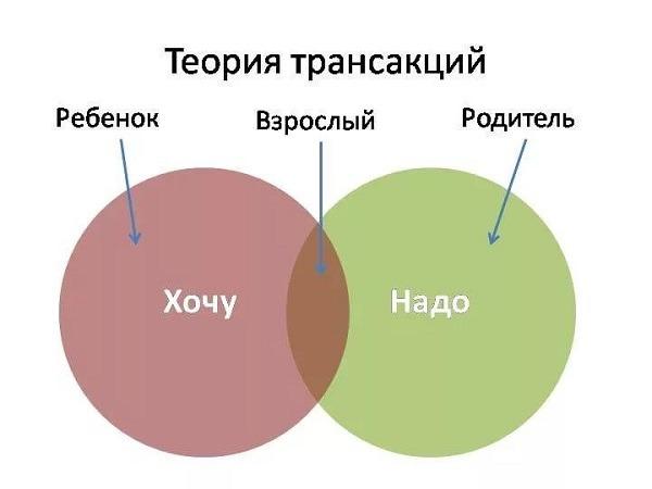 теория трансакции