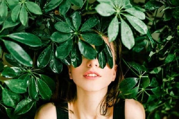 отрицательные свойства зеленого цвета