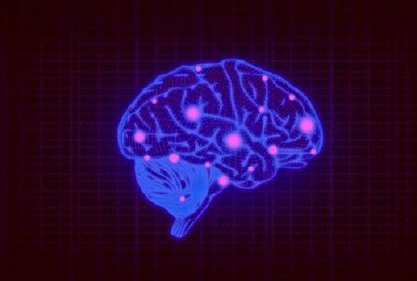 Активизация коры головного мозга