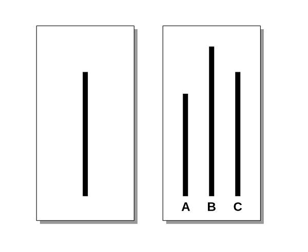 карточки Аша