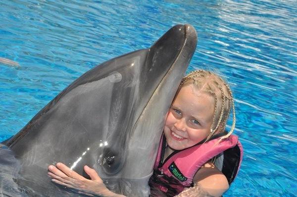что такое дельфинотерапия