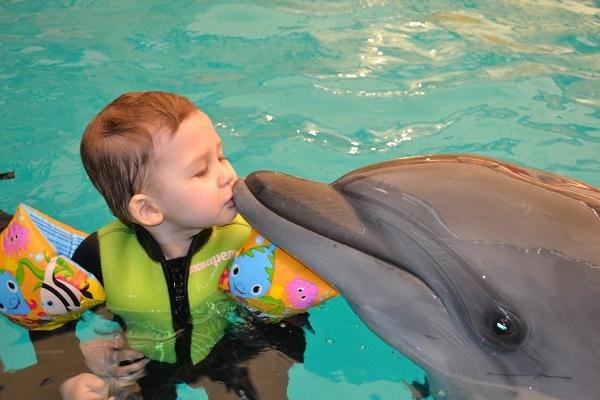 лечение дельфинотерапией