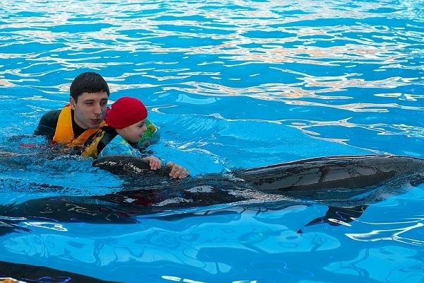 суть дельфинотерапии