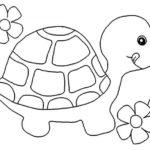 шаблон черепаха