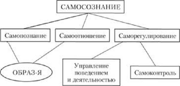 Структура самосознания